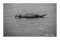 IMG_5958_BW (Tuan Râu) Tags: 1dmarkiii 14mm 100mm 135mm 1d 1dx 2470mm 2018 50mm 70200mm canon canon1d canoneos1dmarkiii canoneos1dx bw black blackandwhite white boat thuyền thảlưới chèothuyền ngưdân lăngcô tuanrau tuan tuấnrâu2018 râu httpswwwfacebookcomrautuan71