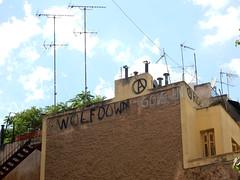 Wolf down — Go Vegan (aestheticsofcrisis) Tags: street art urban intervention streetart urbanart guerillaart graffiti postgraffiti athens athen attiki athina greek greece europe eu exarcheia exarchia