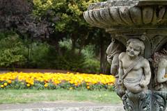Norwood Grove (mrdamcgowan) Tags: london londonist norwoodgrove cherub southlondon capitalring