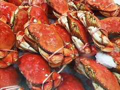Dungeness Crabs (Thad Zajdowicz) Tags: food meal zajdowicz alhambra california usa grocery store crabs dungeness seafood crustaceans red color colour cellphone smartphone samsung galaxy s9 snapseed
