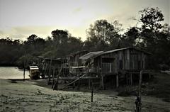 The fishermen's shacks (2) (SM Tham) Tags: asia southeastasia malaysia pahang cherating chendor beach river fishing shacks huts buildings timber zinc boat sand water trees jetty sunset sky