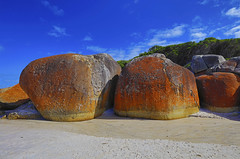 Big Boulders at Squeaky Beach, Wilsons Promontory. (Clement Tang **busy**) Tags: travel autumnmorning bigboulders wilsonspromontory theprom victoria australia westgippsland orangeboulders bluesky whiteclouds hdr cplfilter nature nationalgeographic geologicalfeature graniterock landscape scenicsnotjustlandscapes squeakybeach sandybeach squeakycrack sidelit quartzsand interestingrocks concordians closetonature lichengrowth