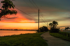 Birds, wires and sunrise (neal1973) Tags: sunrise sun dawn morning clouds sky birds florida usa water sea