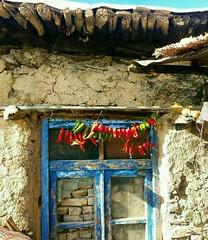 كوردستان - كورد  -    kurdistan- kurd (Kurdistan Photo كوردستان) Tags: وردستانی کورد kurdistan کوردستان land democratic party koerdistan kurdistani kurdistán kurdistanê zagros zoregva zazaki zaxo zindî azadî azmar xebat xaneqînê christianity cegerxwin van love mahabad music arbil democracy freedom genocide herêmakurdistanê hawler hewler hewlêr halabja herêma judaism jerusalem kurdistan4all lalish qamishli qamislo qamishlî qasimlo war erbil efrînê refugee revolution rojava referendum yezidism yazidis yârsânism unhcr peshmerga peshmerge iran rojhelat