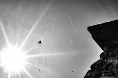 spider in the sun (genelabo) Tags: shot great fahrrad tour bike bicycle bodensee benediktbeuern monochrome schlossburg sky building spinne spider sun gegenlicht sonne schwarz weiss black grau grey white 35mm sony lumen