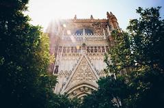 Sevilla Cathedral (Dan Haug) Tags: santamaríadelasede sevilla seville cathedral cathedralofsaintmaryofthesee unesco spain españa christophercolumbus tomb morning sunshine orangetrees facade fujifilm xh1 xf1655mm xf1655mmf28rlmwr andalusia