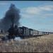 Carrieton to Peterborough - South Australia loco SAR T44 on freight (mb-s002-17)