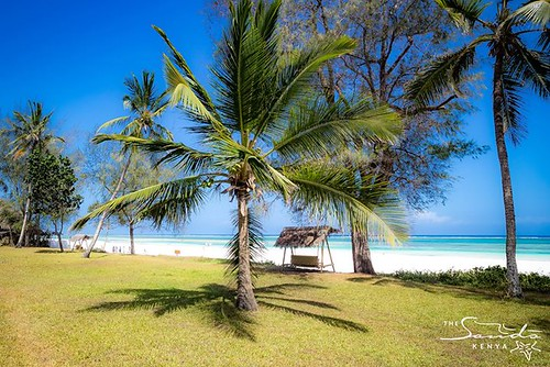 Our beautiful beachfront lawn boasts spectacular ocean views. #tropical #holiday #dianibeach #whyilovekenya
