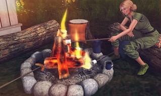 Camping nights