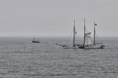 Raising his sail (Nederland in foto's) Tags: netherlands nederland nederlandinfotos nikon pdvandevelde padagudaloma paulvandevelde texel waddenzee sea water sky ship sailingboat boat ocean vessels bay vessel