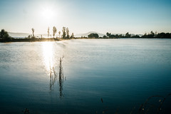 Mindfulness (mripp) Tags: art vintage retro old sunrise spain espagna ebro lake calm meditation selfcare yoga mindfulness mindful achtsamkeit achtsam mbsr sony alpha 7rii voigtlander nekton 40mm f12