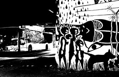 black dog (nika.vero) Tags: bw white dog blackdog graffiti street art hamburg bus monochrome contrast blackandwhite dark tunnel
