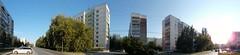 Demakova street, Novosibirsk (mad_sanity) Tags: novosibirsk academgorodok summer street road panorama pano sky 180