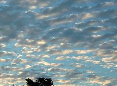 Felhők (Józsa Oszkár-Norbert) Tags: felhők clouds ég sky