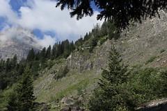 direction l'Au de Mex (bulbocode909) Tags: valais suisse mex forêts arbres falaises montagnes nature nuages vert bleu paysages groupenuagesetciel