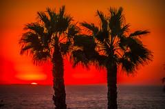 San Clemente Pier Palm Trees California Landscape Seascape Sunset Colorful Clouds! Elliot McGucken HDR San  Clemente Fine Art Landscape & Nature Photography! Epic Pacific Ocean Seascapes!  Enlarged to Nikon D850 resolutions: 8256 x 5504 pixels Socal Art! (45SURF Hero's Odyssey Mythology Landscapes & Godde) Tags: san clemente pier palm trees california landscape seascape sunset colorful clouds elliot mcgucken hdr fine art nature photography epic pacific ocean seascapes enlarged nikon d850 resolutions 8256 x 5504 pixels socal