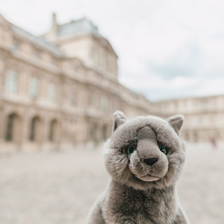 Bonaparte and the Louvre