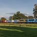 Railpromo 101001 + BE E01 met Coevorden-shuttle, Ommen