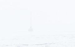 20180908 Oak Bay Fog