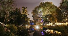 Jardin des plantes (syl20_44) Tags: loireatlantique france nocturne jardin plantes lights night starry stars sky syl20 sylvain canon 70d tokina pano colours trees