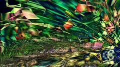 mani-849 (Pierre-Plante) Tags: art digital abstract manipulation