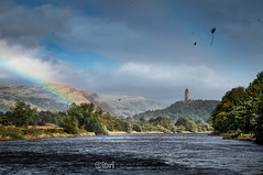 Storm Ali - 19 Sep 2018 - 92 (ibriphotos) Tags: weather stirling riverforth storm rainbow tree wallacemonument forthvalleycollege