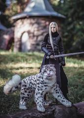 snow leopard for my Irbis ^^ (lukoshka) Tags: dollshe saint bjd bjdphoto dollphoto toys knight