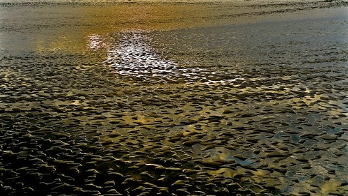 Low Tide Sunset ...