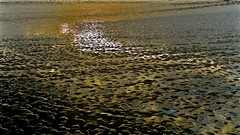 Low Tide Sunset ... (sswj) Tags: 12moonbayca lowtide sunset pacific northerncalifornia california sanmateocounty reflection dslr fullframe scottjohnson availablelight existinglight naturallight dlux4 leica composition abstractreality