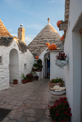 (AleColamonici) Tags: white vacation trip travel summer puglia salento pumpkins trulli alberobello