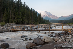 White River Bridge (kevin-palmer) Tags: washington cascades mountains volcano nikond750 august summer mountrainier nationalpark mountrainiernationalpark whiteriver crossing footbridge flowing water snow glaciers boulders forest trees tamron2470mmf28 early morning bridge