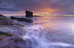 Rise and Shine Charlie (Alex365pix) Tags: seatonsluice seascapes sunrise le leefilters charliesgarden lightshade water weather