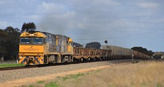 NR26 and NR100 lead PM4 steel out of Horsham on a sunny Spring day (bukk05) Tags: nr26 railpage:class=37 railpage:loco=nr26 rpaunrclass rpaunrclassnr26 nr100 nrclass nationalrail pm4 wimmera westernstandardgaugeline wagons explore export engine railway railroad railpage rp3 rail railwaystation railwaystations ruralcityofhorsham train tracks tamron tamron16300 trains photograph photo pn pacificnational loco locomotive horsepower hp horsham ge ge7fdl16 flickr freight diesel station standardgauge sg spring signal steel 2018 australia artc canon60d canon cv409i gsr indianpacific victoria vr victorianrailway vline victorianrailways mainline smoke ip greatsouthernrail eagle