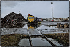 Reflective Mood (Welsh Gold) Tags: freigtliner shed 66543 no2 quay barry docks 4z47 tilbury dow chemicals intermodal train rain puddles dull day valeofglamorgan southwales