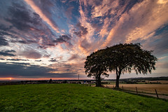 Big Skies (ianbonnell) Tags: sunset crankhill sthelens merseyside rainford clouds trees sky billinge