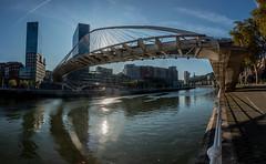 En la Ría de Bilbao (dnieper) Tags: ríadebilbao ríonervión pasarelazubizuri puentedecalatrava torresdeisozaki panorámica hdr