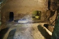La Necropoli di Centocamere_29