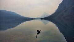 Ciertos reflejos... (Miradortigre) Tags: landscape reflejos reflection ago lago lake bow canada alberta region mountain sky water calm