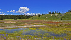 Colours of Yellowstone (t.horak) Tags: colours colourful marsh slope clouds yellowstone nature unspoiled