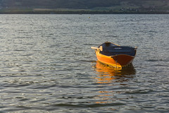 Rowing boat (bertrandwaridel) Tags: 2018 august lacdeneuchâtel switzerland vaud yvonand lake rowingboat summer suisse