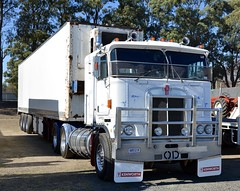 cabover Kenworth (quarterdeck888) Tags: trucks photos truckphotos australiantrucks outbacktrucks workingtrucks primemover class8 overtheroad interstate frosty quarterdeck jerilderietrucks jerilderietruckphotos flickr bdoubles lorry bigrig highwaytrucks interstatetrucks nikon truck claredontruckshow clariontruckshow2018 truckshow australiantruckshows kenworthclassic oldtrucks oldaustraliantrucks australiantransporthistory kenworth cabover