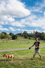 One man and his dog (daveseargeant) Tags: london greenwich street park observatory nikon df colour 50mm 18g candid