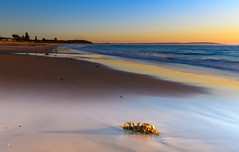 Clear Skies Sunrise Seascape (Merrillie) Tags: daybreak sunrise seashore nature dawn australia surf centralcoast morning weather newsouthwales waves noraville nsw sea beach ocean sky landscape earlymorning coastal waterscape outdoors seascape hargravesbeach coast water seaside