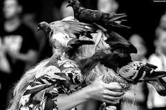 IMG_7891-1ri (kleiner nacktmull) Tags: altstadt apsc black blackandwhite bw blanco blancoynegro camera canon city dslr eos europa europe erbe foto flickr grey grau kamera kleinernacktmull kolle lens monochrome nacktmull negro objektiv old photo polen poland polska stephankolle stephan stadt schwarzweiss schwarz sw schwarzweis unesco krakau krakow kraków weis white weiss worldheritage world weltkulturerbe welterbe welt heritage 60d 70300mm 2018 rynekgłówny rynek hauptmarkt markt market square platz vögel vogel bird birds tauben taube tiere animals birdfeeding feeding girl mädchen