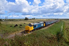 Large Logo 37424 'Avro Vulcan XH558' rounds the curve at Stracy Arms, ready to tackle the long Acle Straight, with the 11.57 Gt Yarmouth - Norwich Short Set. 37405 on the rear. 25 08 2018 (pnb511) Tags: eastanglia norfolk flatlands wherrylines track train trains loco locomotive diesel class37 drs directrailservices shortset greateranglia