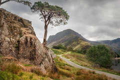 Fleetwith Pike (Rich Walker75) Tags: lakedistrict landscape landscapes landscapephotography mountain mountains tree trees rock path buttermere cloud clouds canon efs1585mmisusm england eos eos80d