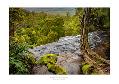 Russell Falls - Tasmania (Dominic Scott Photography) Tags: dominicscott tasmania australia russellfalls waterfall sony a7rm2 gmaster leefilters sel1635gm manfrotto