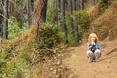 Anna, Pfeiffer Big Sur State Park (alexhouston) Tags: kids anna hiking big sur trip 2018 labor day explorations vacation pfeiffer state park