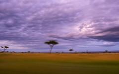 Sunset at Olllololo camp.,Have to return quickly to the camp. (odileva) Tags: sunrise oloolologate paysage june kenia masaimaranp nature transmara riftvalleyprovince kenya ke