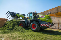 The New CLAAS TORION 1914 wheel loader in action! (martin_king.photo) Tags: springwork springwork2018 silage silage2018 brandnew new claastorion1914 claas claastorion wheelloader inaction action first today michelin tires big strong silo outdoor claasworldwide biggest strongest huge machine sky martin king photo agriculture machinery machines tschechische republik powerfull power dynastyphotography lukaskralphotocz agricultural great day czechrepublic fans work place tschechischerepublik martinkingphoto welovefarming working modern landwirtschaft colorful colors blue photogoraphy photographer canon tractor love farming daily onwheels farm skyline allclaaseverything claasfans worker michelintires